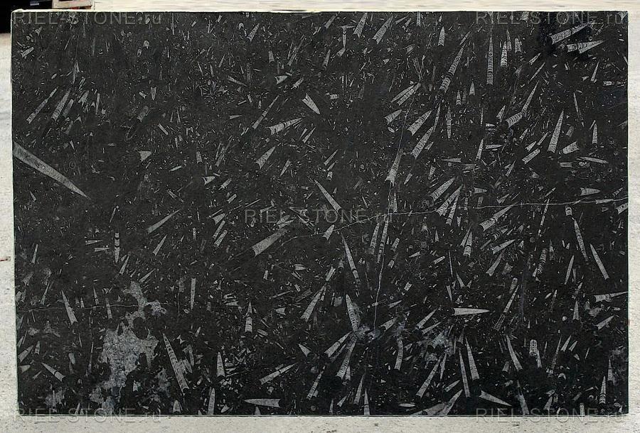 Cлэб Black Fossile